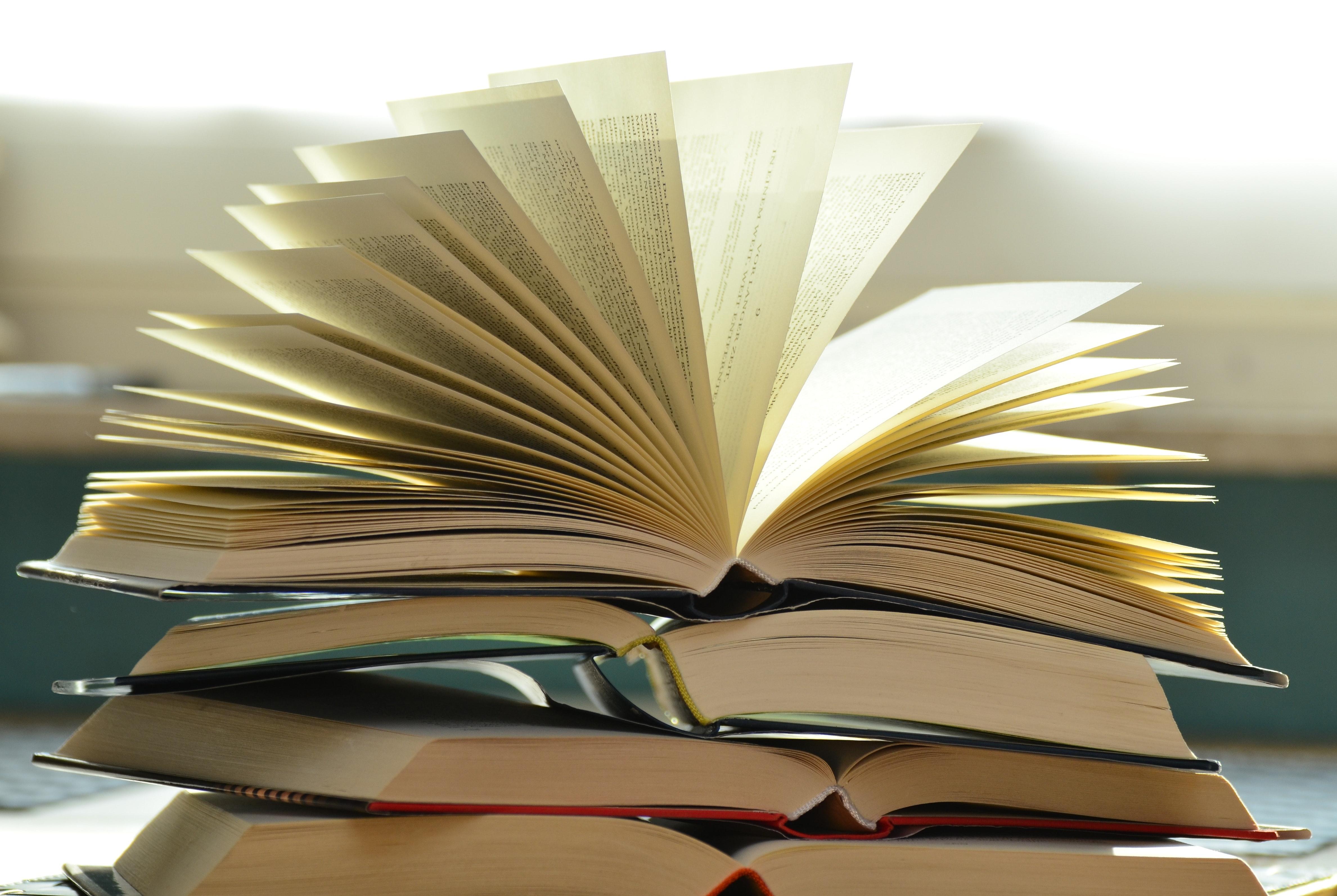 Blogga om dina favoritböcker
